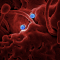 Pestilence / Coronavirus